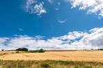 Panoramic Countryside Views