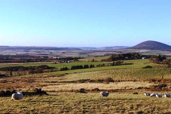Barnhill site View