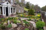 Front Garden Alternative
