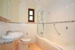 Bathroom with overbath shower