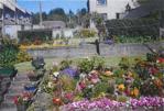 Extensive Terraced Rear Garden (clients photo)