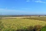 1 acre field plus views