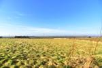 1 acre field